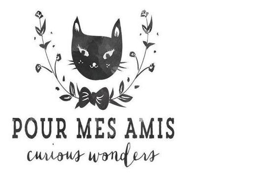POUR MES AMIS logo